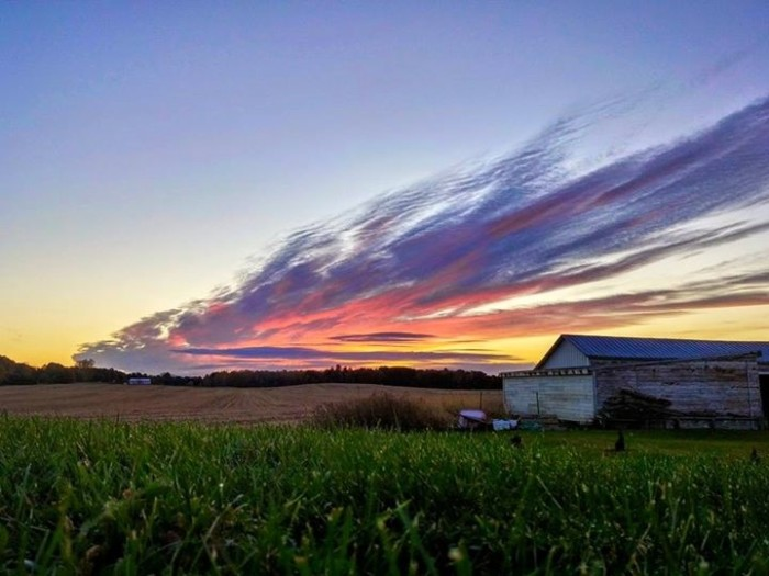 2. Farmland as far as the eye can see--Wisconsin really is the best place to live.