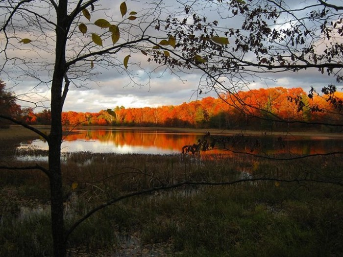 4. Gary captured the flamboyance of fall in Wisconsin with this scene in Burnett County.