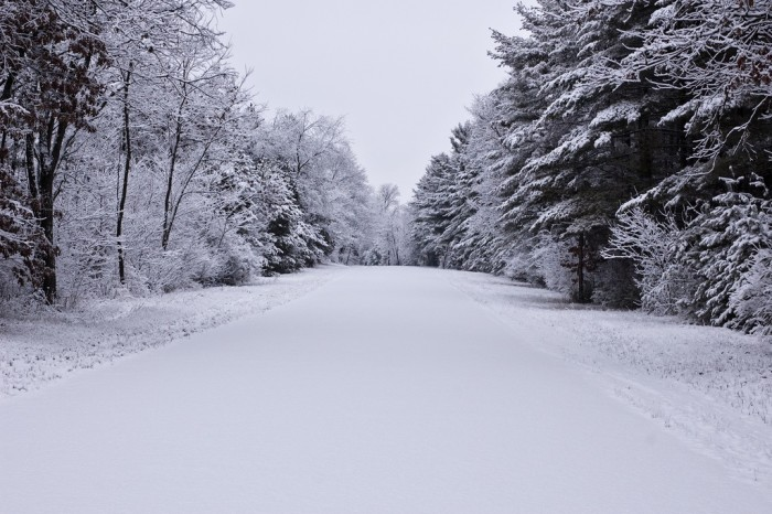 7. On average, Wisconsin gets around 40 inches of snow each year.