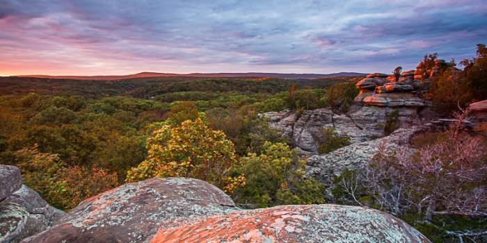 7. Shawnee National Forest