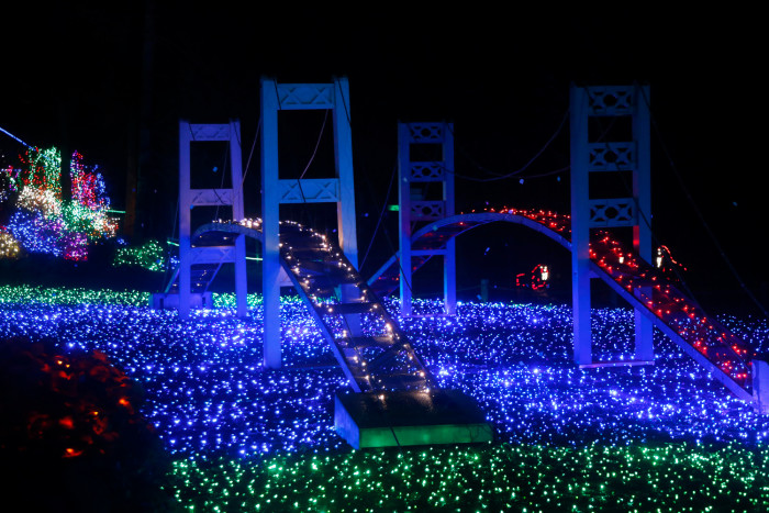 Cleveland Zoo Christmas Lights