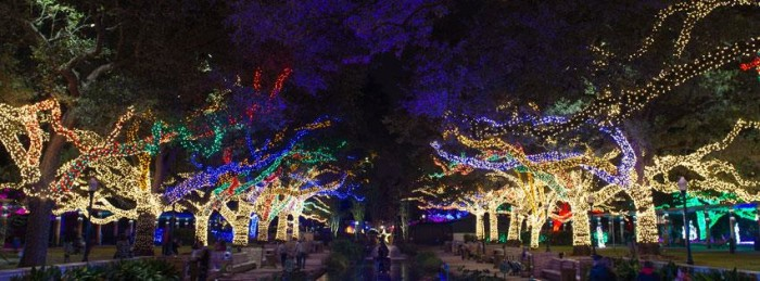 zoo lights houston - Best Christmas Lights In Texas