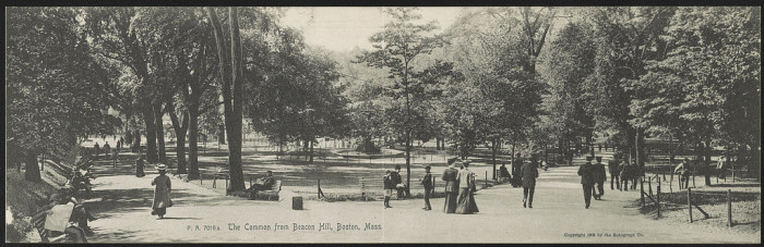 6. The Common from Beacon Hill, Boston, 1905.