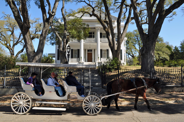 1. A Horse-Drawn Carriage Ride