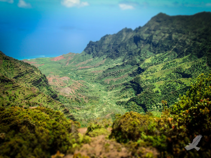 1) Hike the Kalalau Trail.