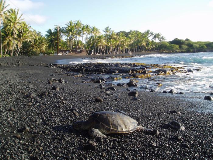 1) Punaluu Beach