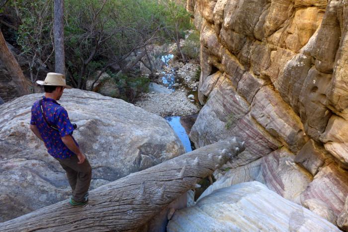 3. Pine Creek Canyon Trail