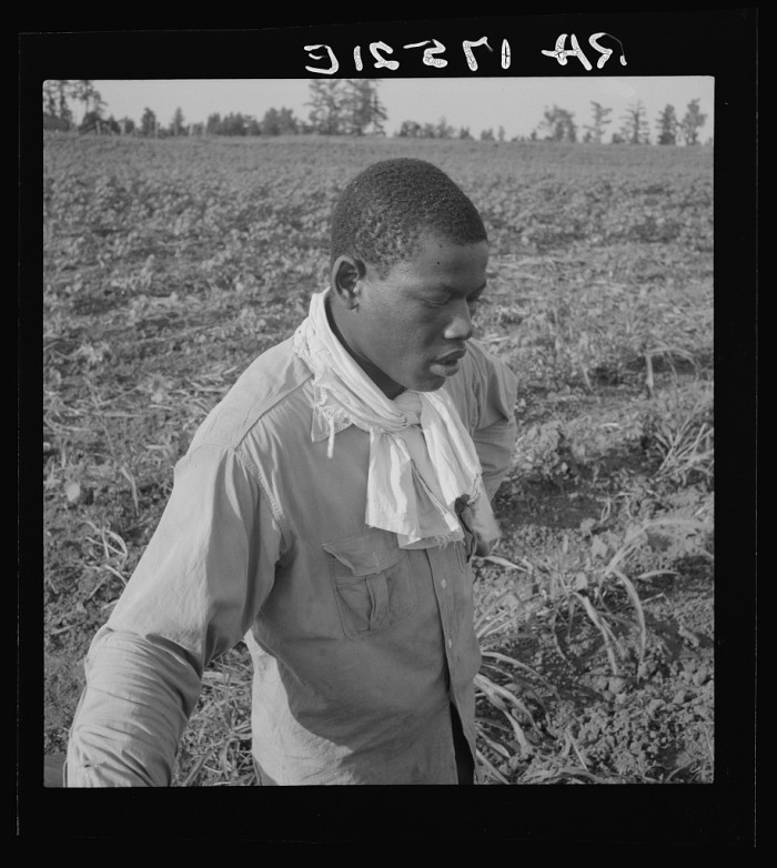10. In July of 1937, a cotton hoer on a Coahoma County farm takes a short break.