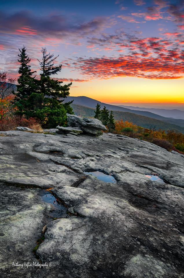 7. Carolina dawn.
