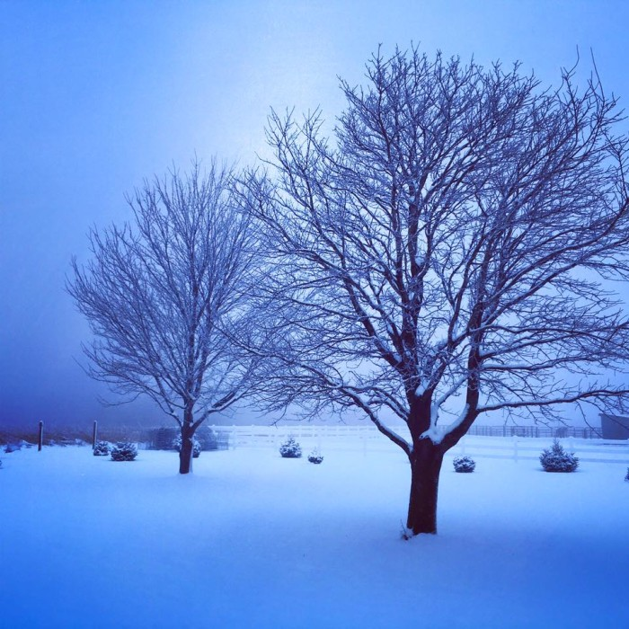 12.  Linda Arndorfer Vilmain took this magical, blue-toned photo near Luther.