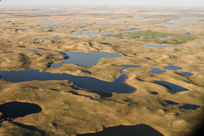 5. This fascinating photo of the Prairie Pothole region near Wing, ND.