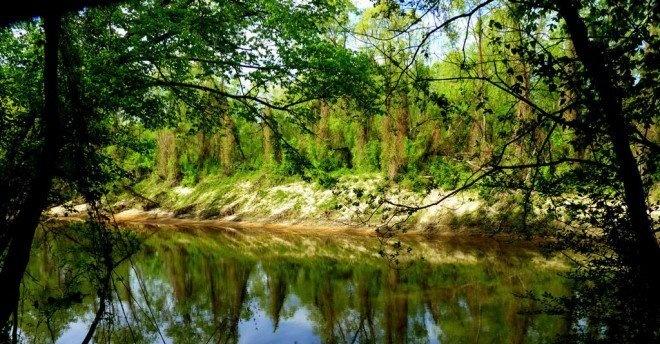 10. Amite River