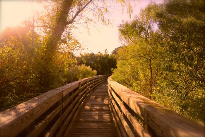 1. Nature walk in Rockport