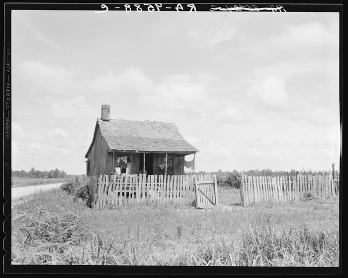 11. The cabin of a cotton farmer sits in a desolate Delta field.