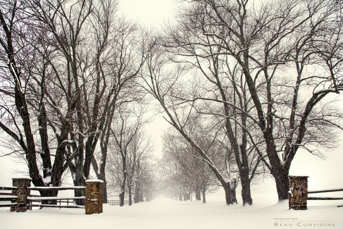 1) This lovely photo taken in Baltimore County makes the snowy road seem inviting.
