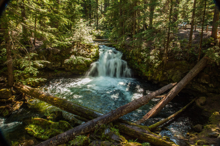 There are many other lovely features you can see along the way, or by elongating your hike to check out some of the other beautiful waterfalls nearby.