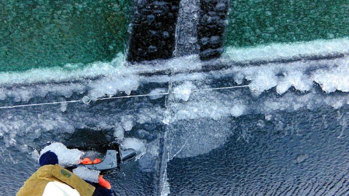 14.  Ice Storm