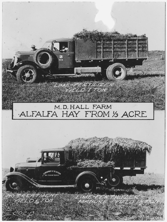 12.Comparison of amount of alfalfa hay grown with different types of fertilizer.