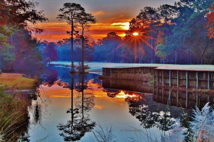 2. Gorgeous reflections.