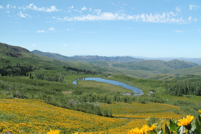 5. A picturesque view of the Jarbidge Wilderness.