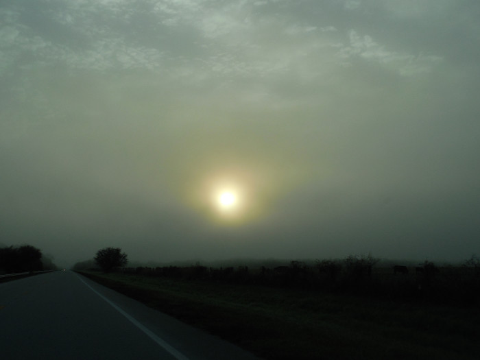 5. Or an equally charming foggy field at sunrise. Pictured is Hwy 78 near Ortona.