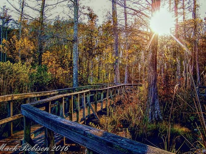13. Sardis Dam Nature Trail