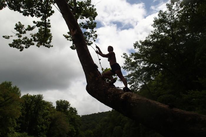 13. Tree climbing and cliff jumping at the Meramec River.