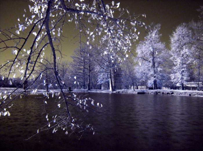 1. Eckie's Pond, Starkville