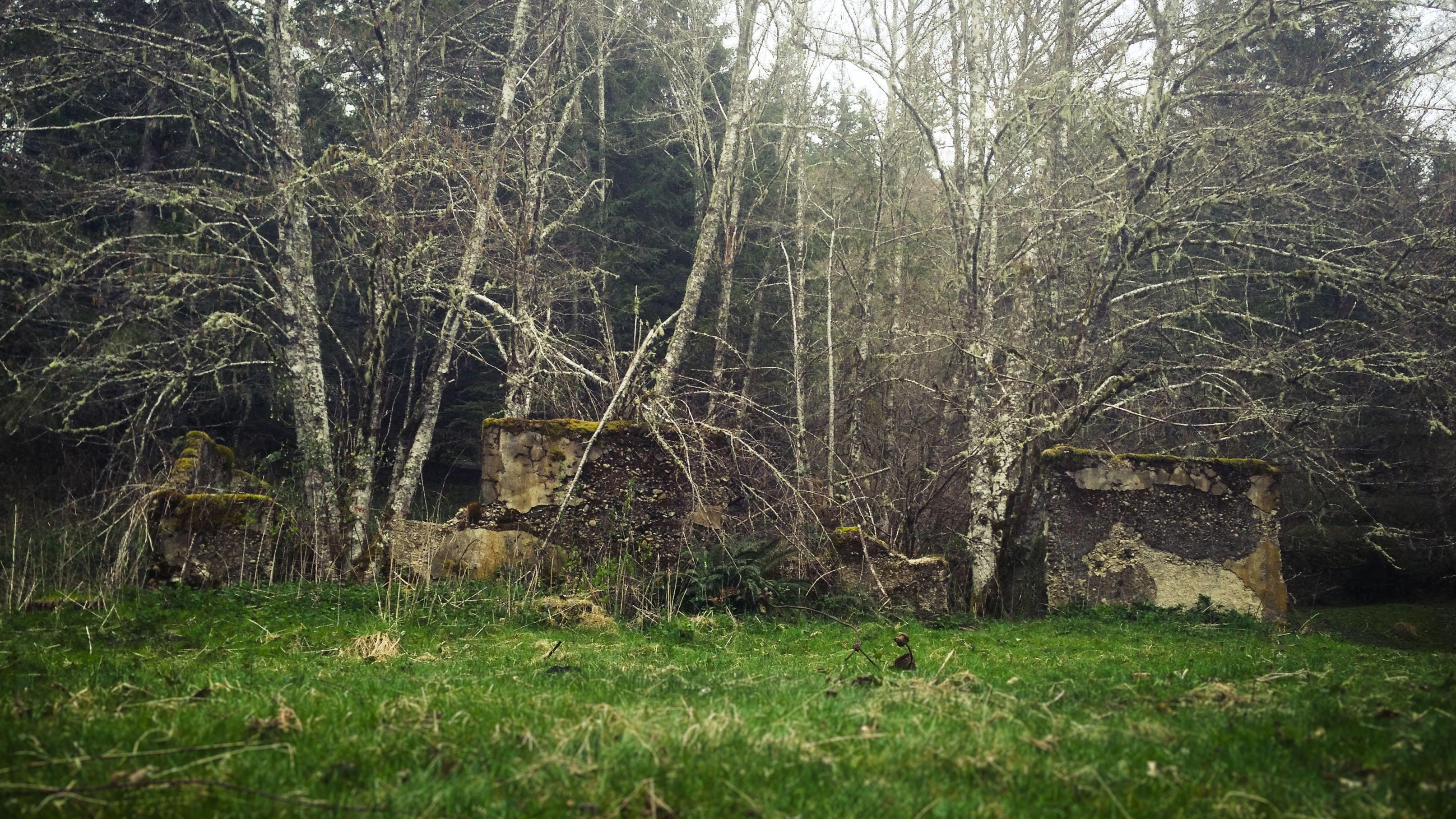 The Ghost Town Of Melmont Washington