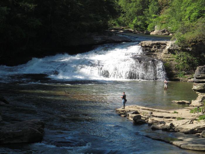 5) Swallow Falls, Garret County