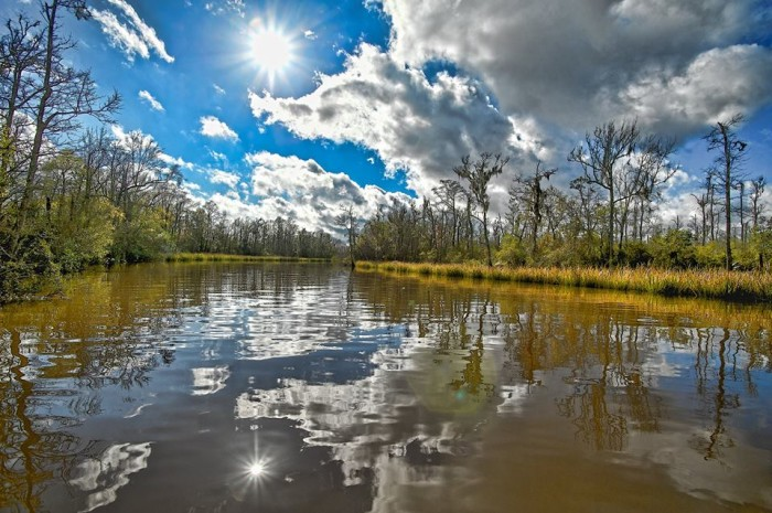 15. Creole Bayou (near the Pascagoula River)