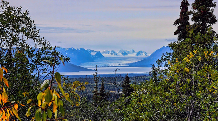 9) A distant view of Tazlina Glacier.