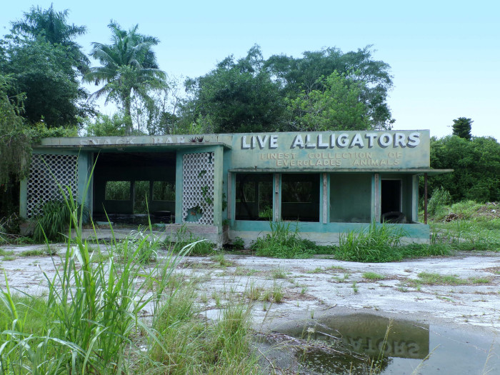 17 More Abandoned Places In Florida That Nature Is Reclaiming