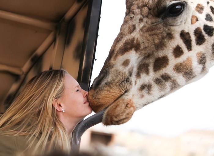 3. Go on a safari