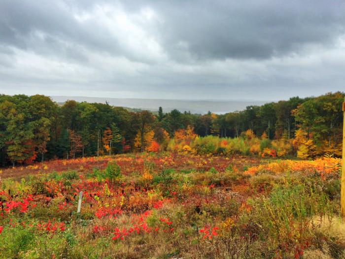 12. Quabbin Overlook, New Salem