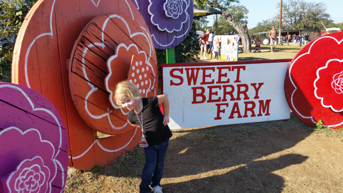 17. Go strawberry pickin' at Sweet Berry Farm in Marble Falls!