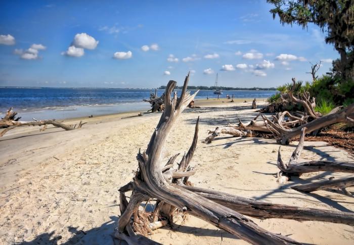 3. Driftwood Beach, Jekyll Island, GA