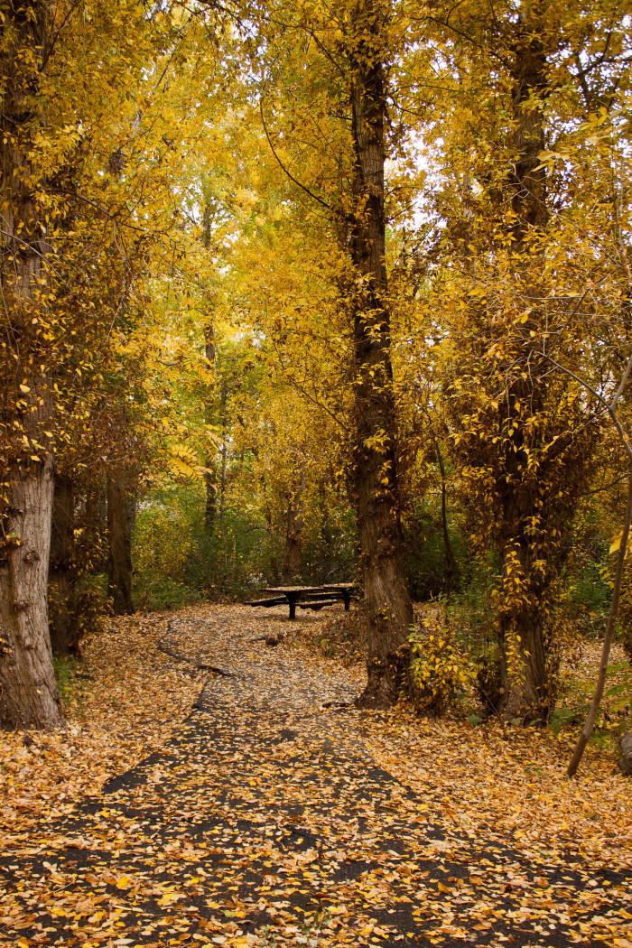 12. A hidden picnic place...