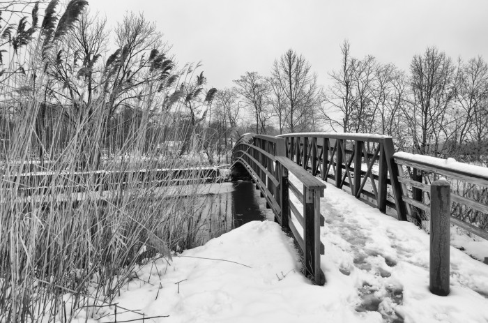 12. A snowy footbridge in Plainsboro.