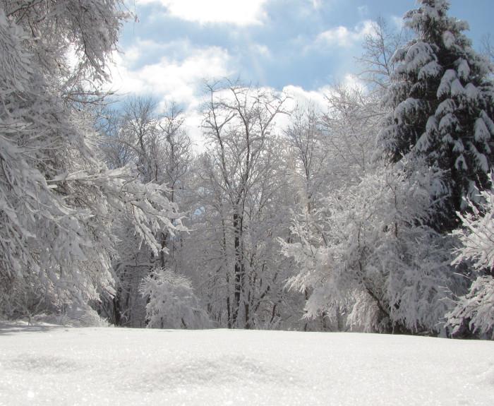 11. Snowfall in Adams County