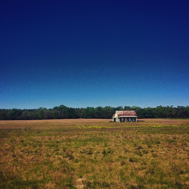 15. On a clear day, you can see nothing but blue sky for miles. Pictured is an old farmhouse in Levy County.