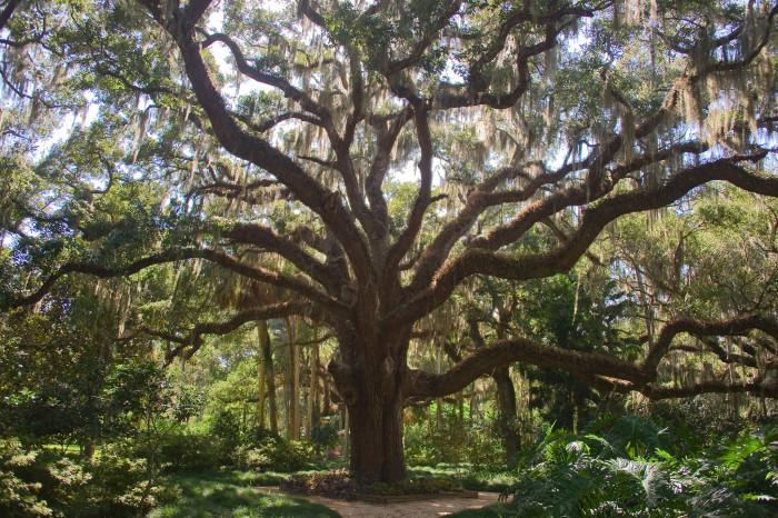 4. Washington Oaks Gardens State Park, Palm Coast