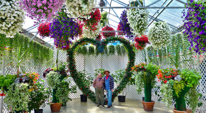 3) Glacier Gardens in Juneau is a hot spot for the epic marriage proposal. Flowers everywhere and a romantic vibe - a perfect place to pop the question.