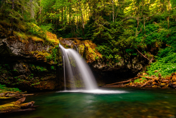14. This enchanting photo shows Iron Creek Falls in the Gifford Pinchot National Forest. The dazzling waterfall drops down over a basalt rock ledge into a bright teal pool.