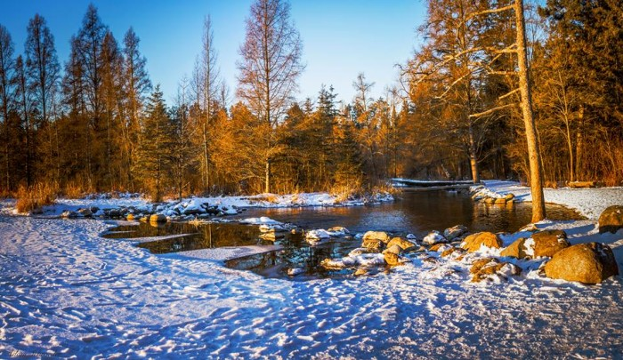 6. Itasca State Park is unbeatable in the winter! The sunlight makes the Mississippi Headwaters unbelievably pretty.