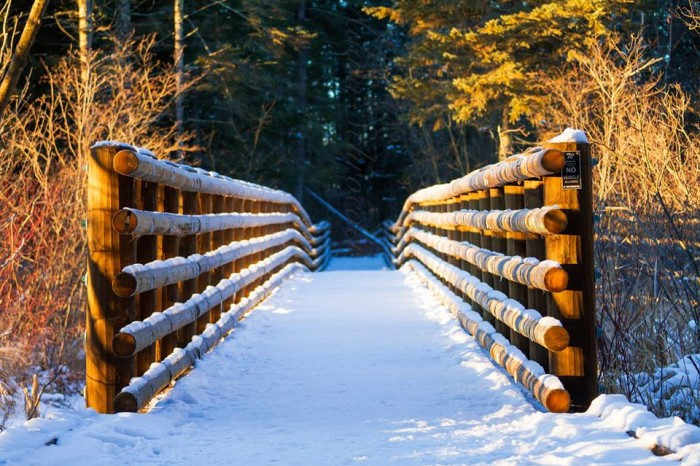 21. Itasca State Park looks straight off the set of any Christmas movie!