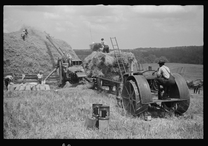 3) These farmers are threshing in Brookeville, MD.