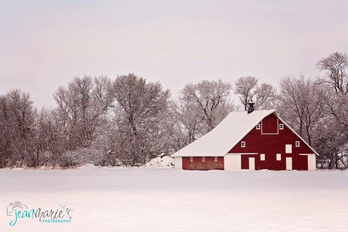 10. Jean Martin took this photo of a bright red barn standing out against the white snow in Missouri Valley.