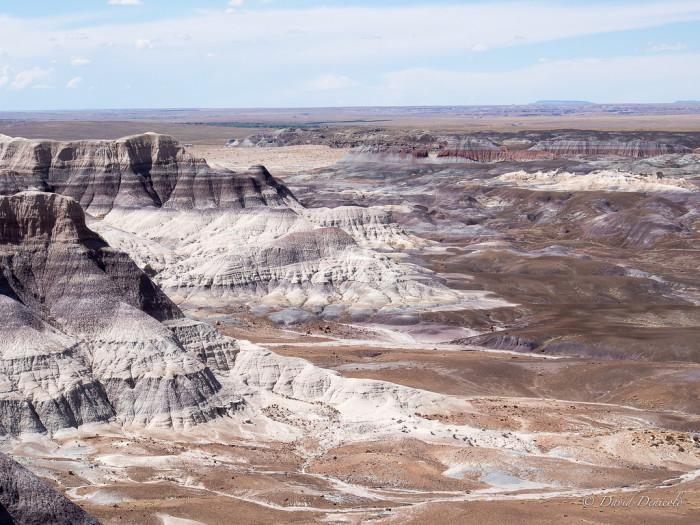 1. Arizona is one huge, barren desert.