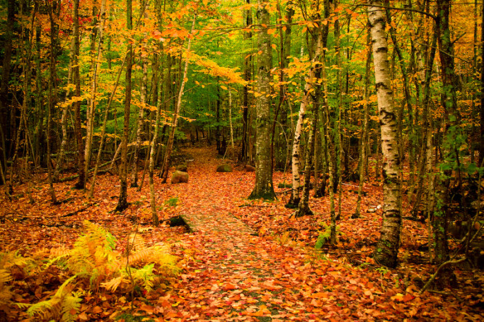 """13. """"Even autumn was nice. I'd take a lovely autumn day right about now."""""""